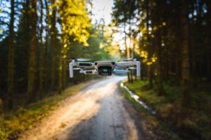 DJI Mavic Mini In Forest