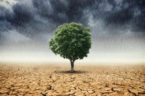 Concept Of Climate Change