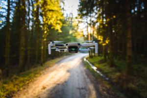 DJI Mavic Mini In Forest