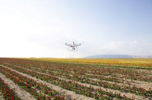 DJI Phantom 4 agriculture drone
